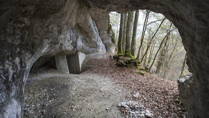 S'il te plaît, dessine-moi la grotte de Cotencher!