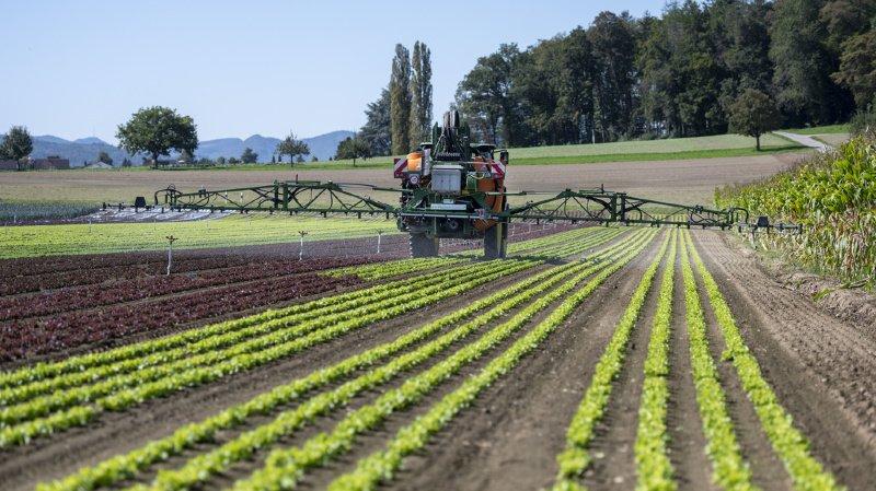 Agriculture: les paysans seront mieux indemnisés en cas d'expropriation