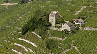 Environnement: un projet immobilier menace un vignoble unique au coeur du site de Lavaux (VD)