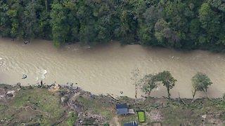 Amazonie: la justice colombienne ordonne des mesures de protection