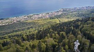 Neuchâtel: travaux d'entretien prévus dans la forêt de Chaumont