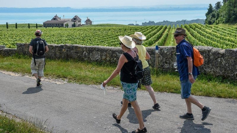 Un «tour suisse» pour développer l'œnotourisme
