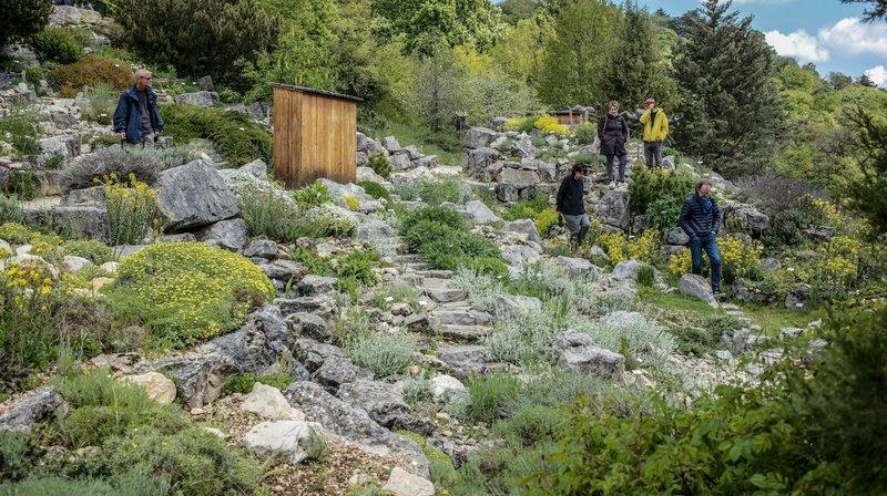 Neuchâtel: le Jardin botanique veut créer un livre de recettes à base de plantes médicinales