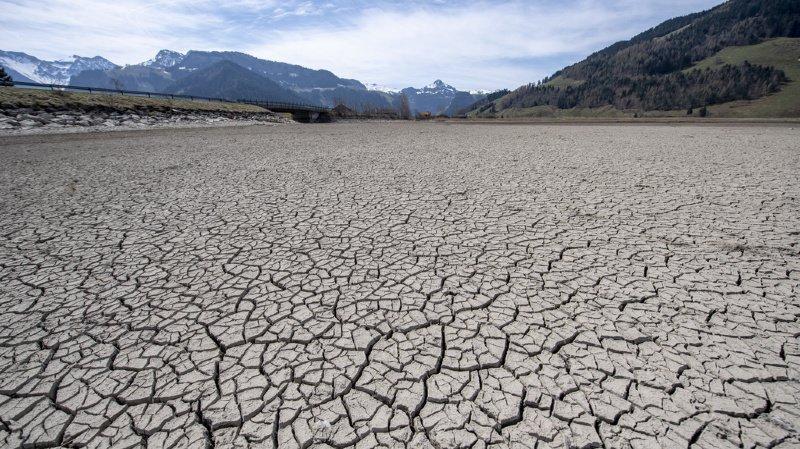 Météo: la sécheresse sévit partout en Suisse, mais la situation varie selon les régions