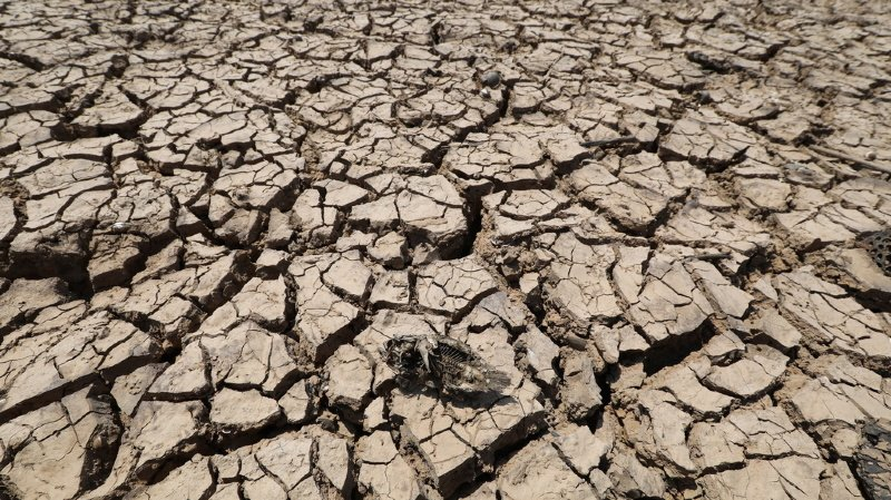 Climat: la température moyenne devrait atteindre des records d'ici 5 ans