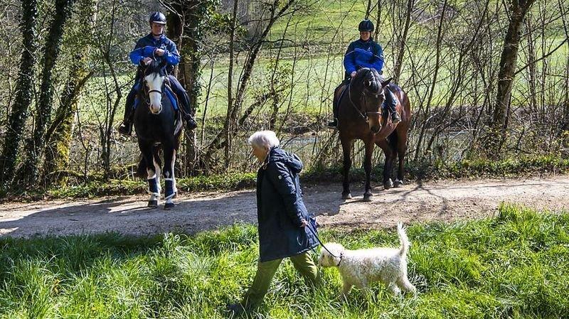 Coronavirus: des chevaux pour faire respecter les distances dans le Jura