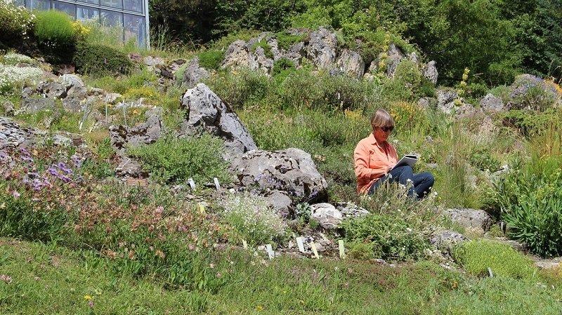 Atelier d'écriture au Jardin alpin Flore-Alpe