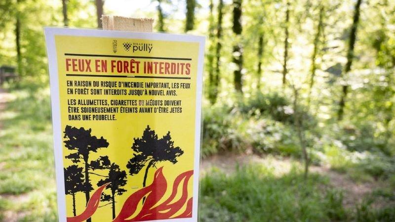 Sécheresse: feux à nouveau autorisés en Suisse, interdiction levée aux Grisons