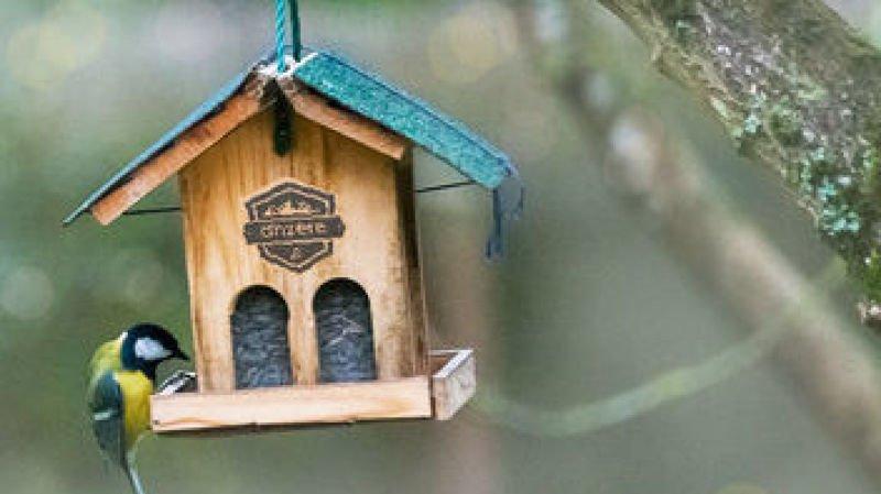 Atelier de fabrication d'un nichoir à oiseaux