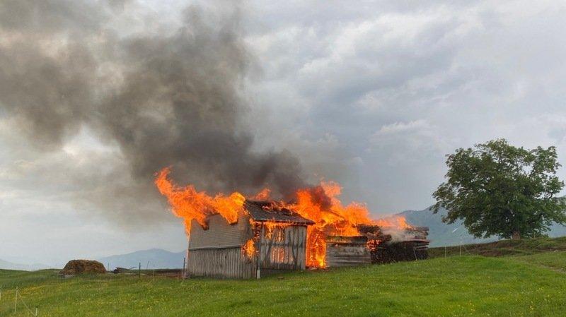 Appenzell: 14 animaux périssent dans les flammes lors d'un orage