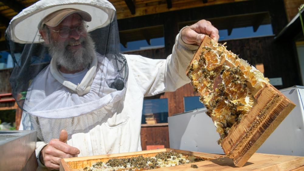 Gilbert Dey, apiculteur animateur à Espace Abeilles à Cernier.