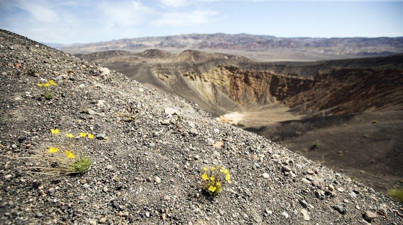 Climat: température record relevée dans la Vallée de la Mort