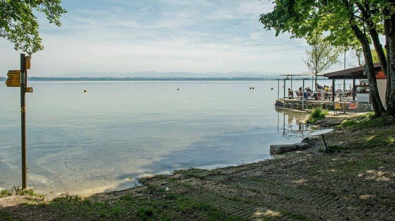 Cyanobactéries: à Boudry et Colombier, les établissements touristiques tirent la langue