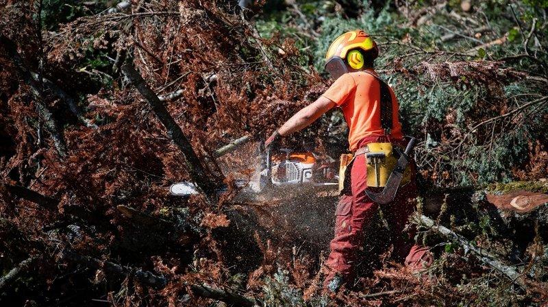 Le danger d'incendie est à nouveau marqué dans le Jura à cause de la sécheresse. (photo d'illustration)