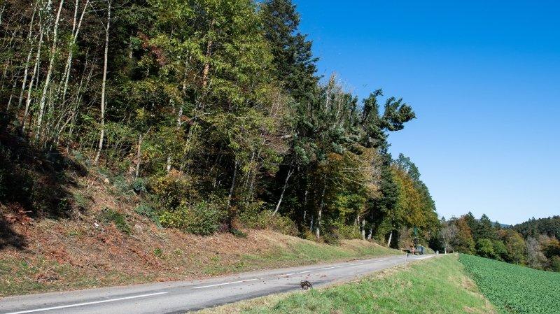Le second accident s'est déroulé sur la route de la Tourne, photographiée ici lors d'une opération de débardage.