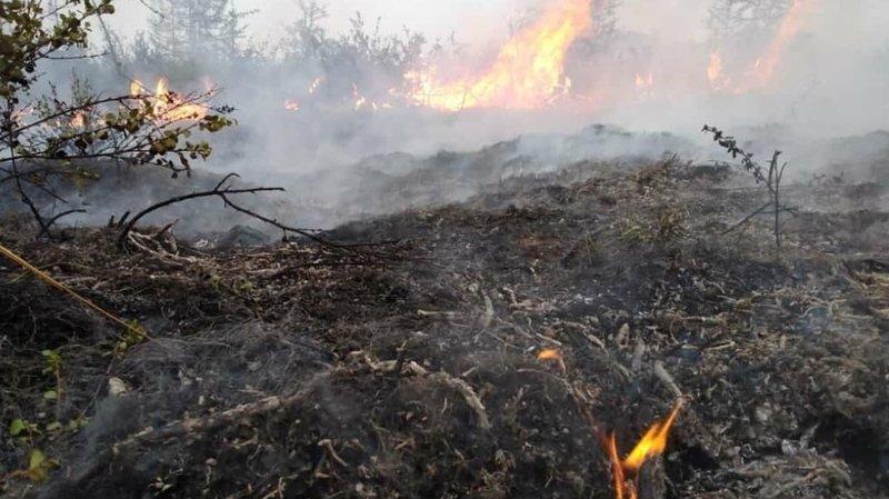 Russie: les incendies se poursuivent en Sibérie