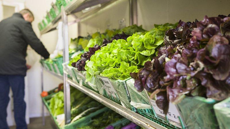 Agriculture: les paysans veulent profiter du boom de la vente directe