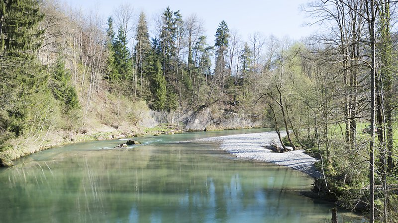 Avec ses forêts, son agriculture, ses zones habitées et ses infrastructures, le bassin versant de la Thur a servi de base à cette étude. (Archives)