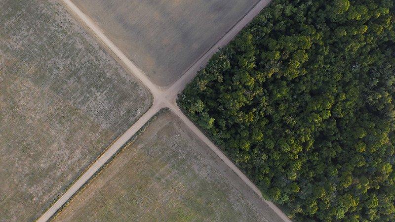 La déforestation de l'Amazonie a atteint un record au premier semestre, elle a touché 3069 km2 (archives).