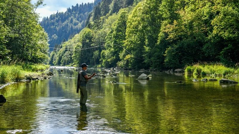Sécheresse, algues, tiques, truites: comment se porte le Doubs?
