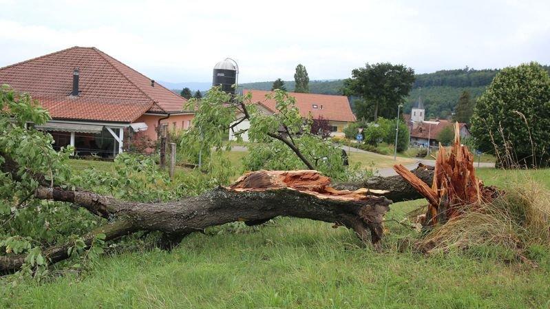 Dégâts suite à l'orage de samedi en Ajoie