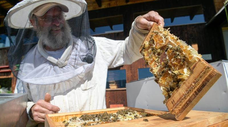 2020, une bonne année pour le miel dans la canton de Neuchâtel