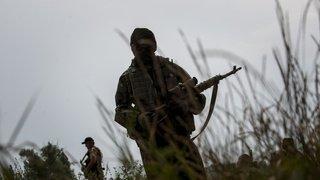 Extrémisme: un Genevois combat au sein d'une milice néonazie ukrainienne