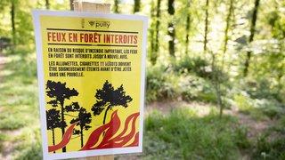 Sécheresse: feux interdits dans plusieurs cantons à cause du risque d'incendie