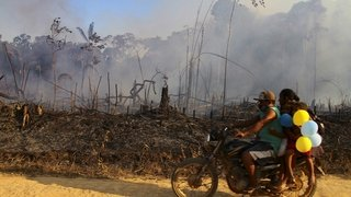 Amazonie: la plus grande forêt tropicale du monde se consume