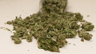 La police a saisi plusieurs kilos de cannabis à Bienne