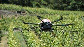 Bevaix: test d'un drone géant dans un vignoble