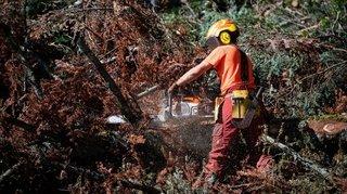 Danger d'incendie marqué, le Jura appelle à la prudence