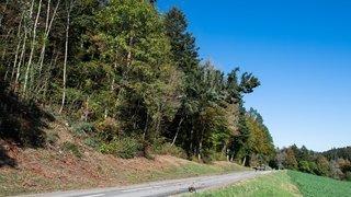 Deux motards chutent et se blessent à La Chaux-de-Fonds et Montmollin