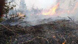 Feux de forêt en Sibérie: des villes russes étouffent sous la fumée