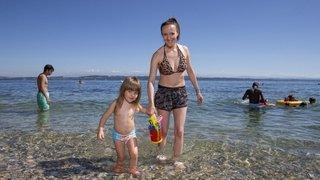 Cyanobactéries: les baigneurs profitent à nouveau du lac de Neuchâtel