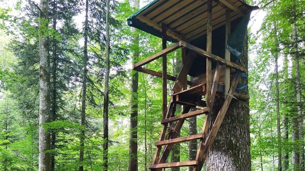 La pose des nourrissoirs et miradors ne peut pas s'effectuer sans l'accord du propriétaire de la forêt.