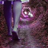 Alice, retour aux Merveilles