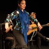 Annulé - Art Dance présente Flamenco Passions