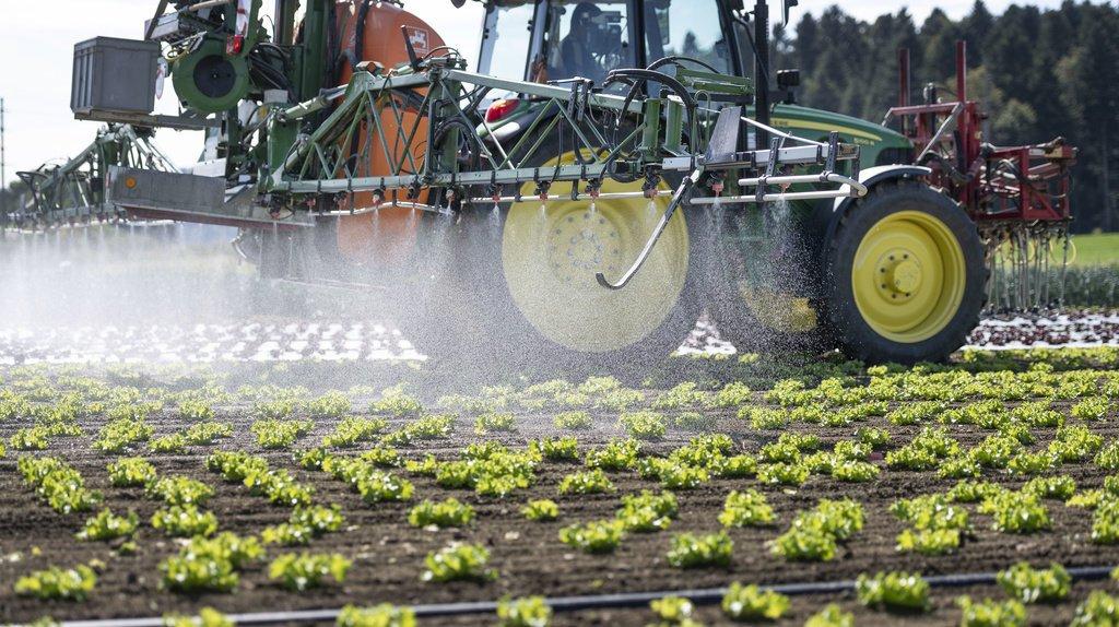 Les risques liés aux produits phytosanitaires devront être réduits de 50% d'ici 2027. (illustration)