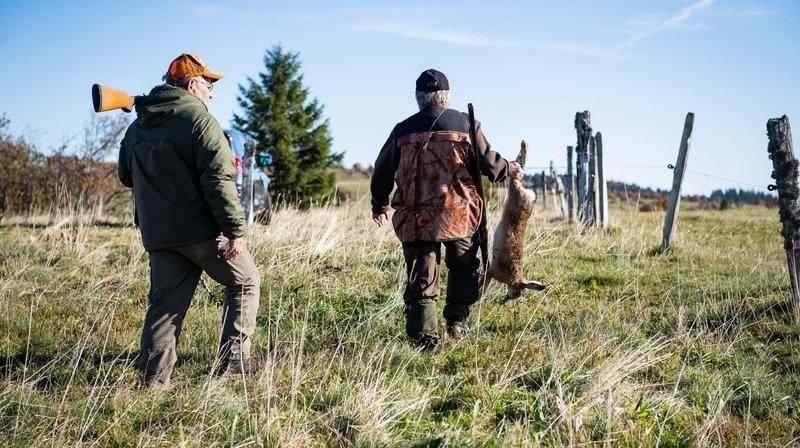 Les chasseurs neuchâtelois appellent à voter oui à la nouvelle loi sur la chasse