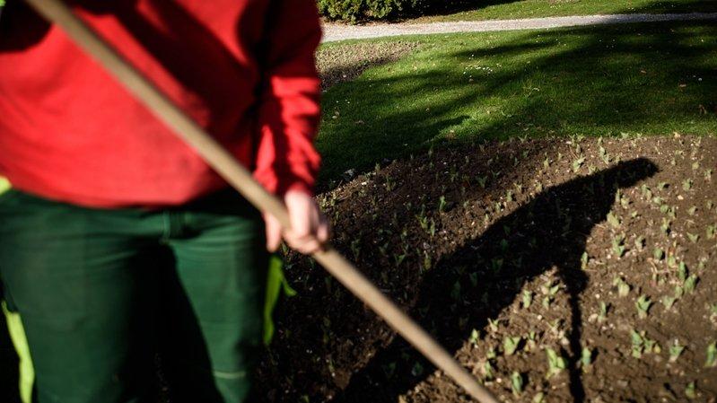 Accidenté sur son lieu de travail, l'apprenti horticulteur-paysagiste n'a pas pu éviter l'amputation. (image d'illustration)