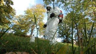 Herbicides: dans les jardins oui, mais pas sur la chaussée